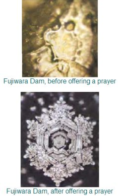 01_emoto_before-after