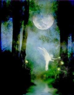 MysticForest_fae