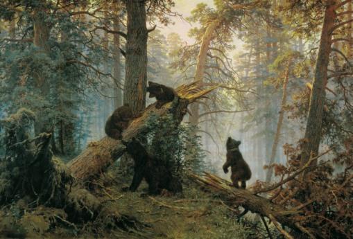 003_utro_v_sosnovom_lesu