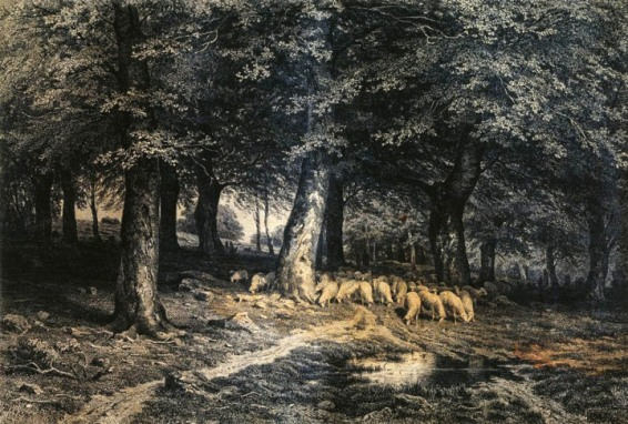 008_sss-a_herd_of_sheep_in_the_forest