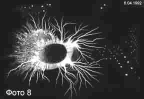 biopole_parazit-1