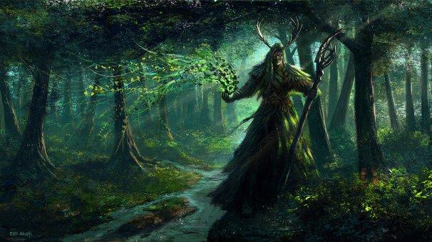 067_druid02